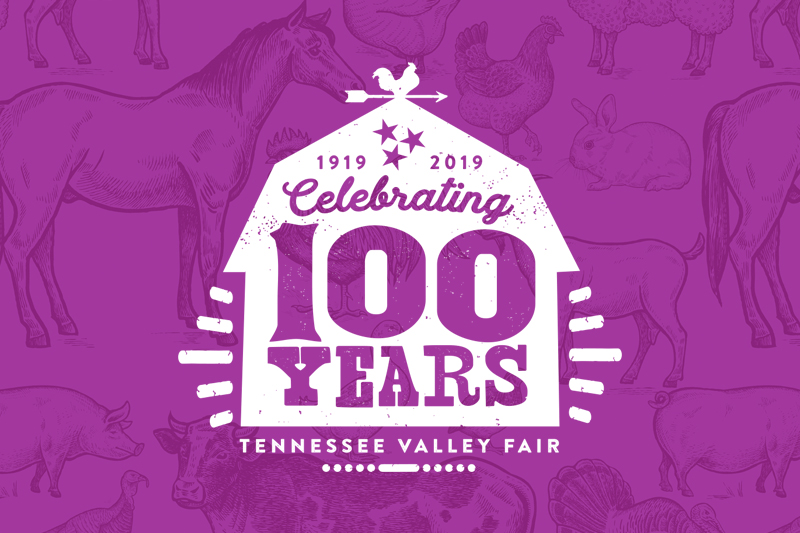 Tennessee Valley Fair T-shirt